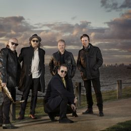 The Black Sorrows Are Back